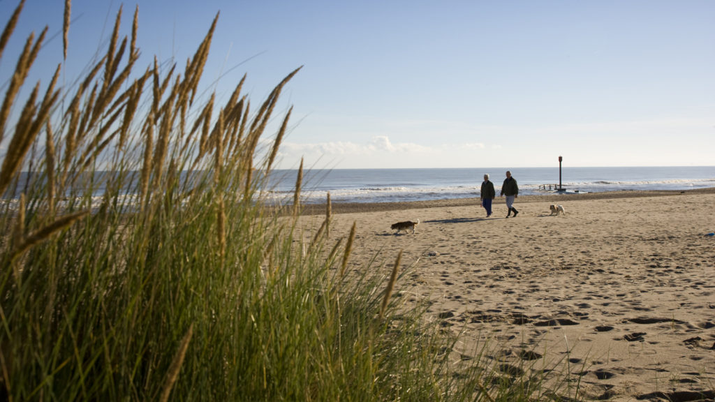 Dog Friendly Beaches in Lincolnshire