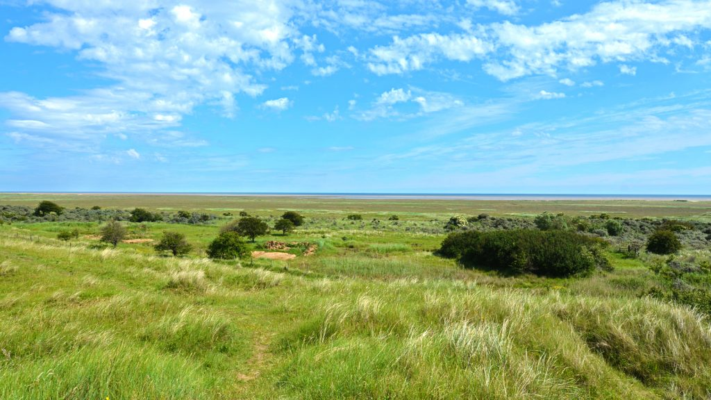 Anderby Dunes